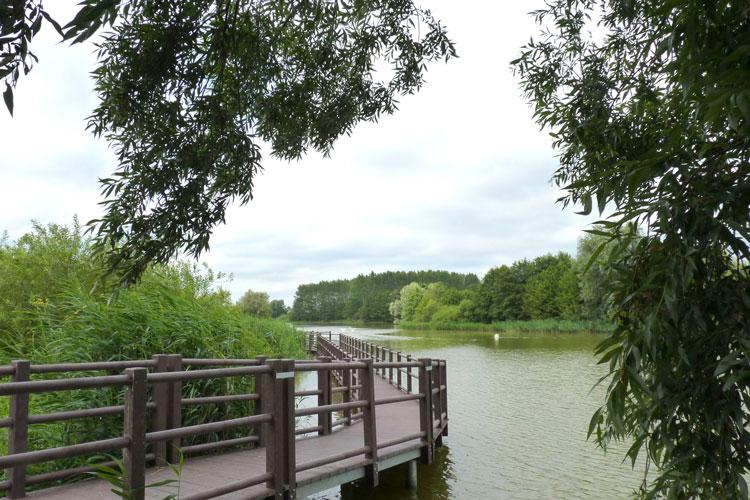 KrämerForst3_Regionalparks_Brandenburg_Berlin