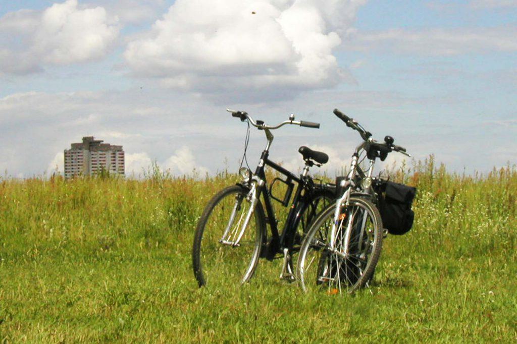 Flutgrabenaue_Regionalparks_Brandenburg_Berlin