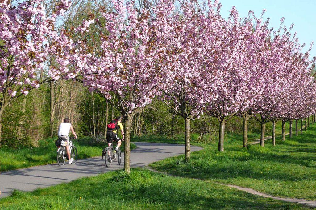Teltowpark_Regionalparks_Brandenburg_Berlin