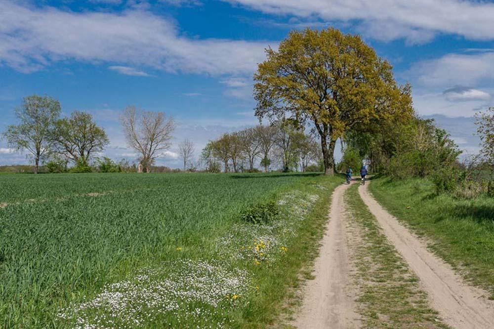 regionalparks-berlin-brandenburg-masterplan-gruen-fahrrad-blumberg-gr